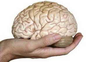 โรคสมองเสื่อม