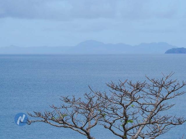 เกาะไม้ท่อน