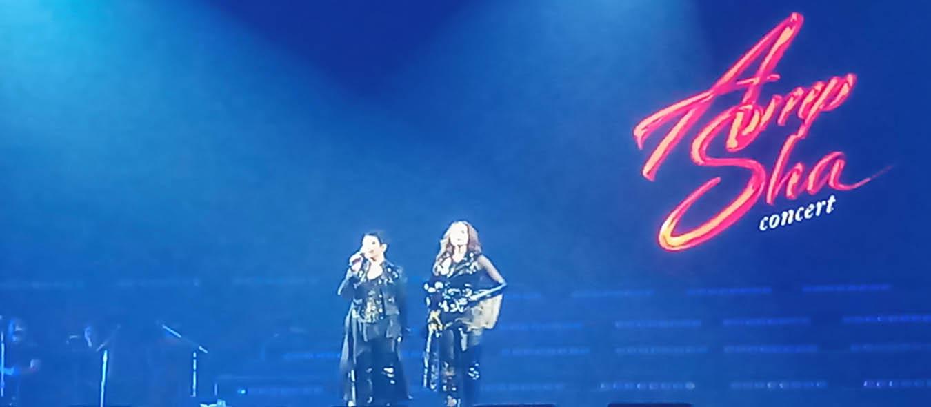 AMP SHA Concert